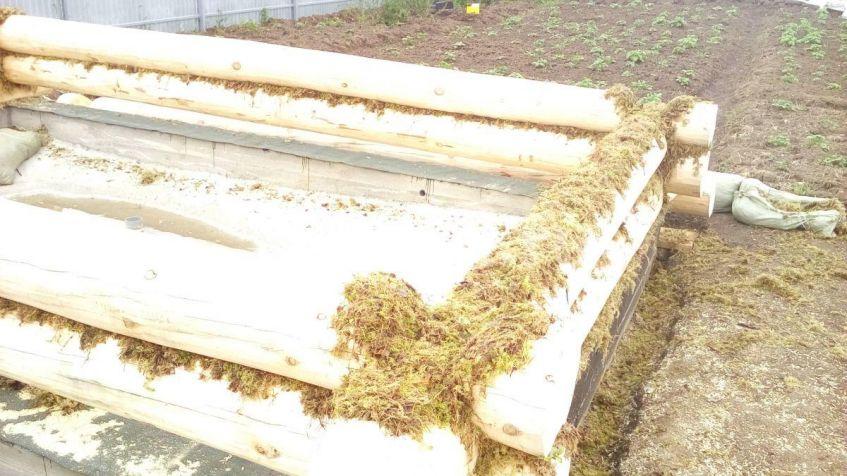 Монтаж сруба бани 6*4 на мох