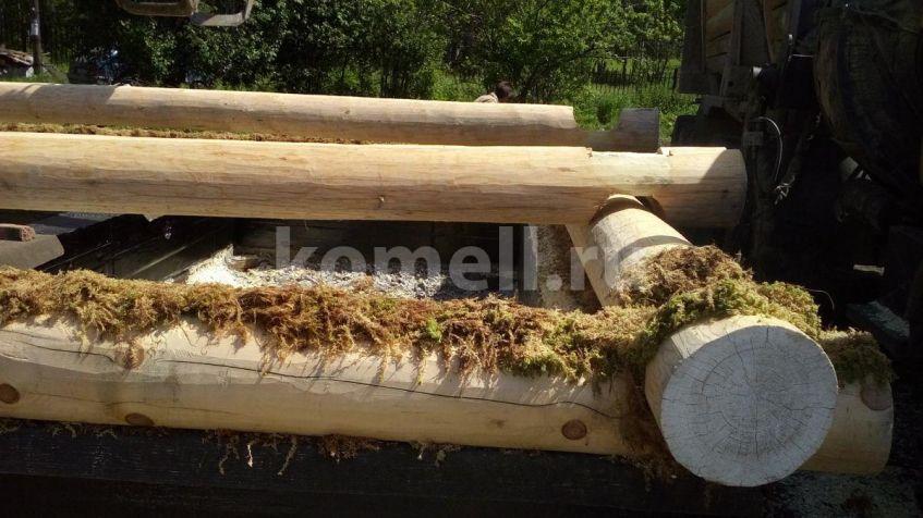 Правильно укладывать мох в срубе компания Комель