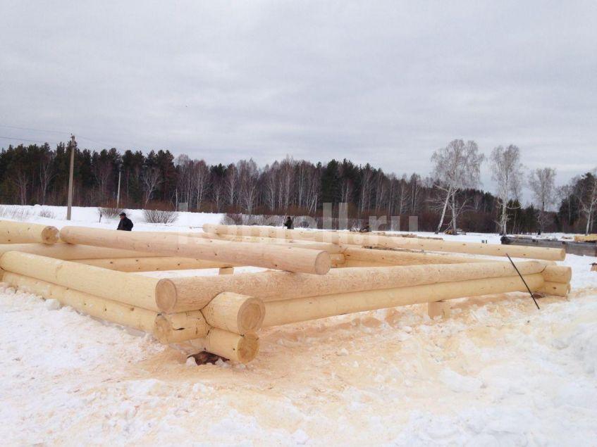 Начало рубки сруба 11-13 из сосны компания Комель